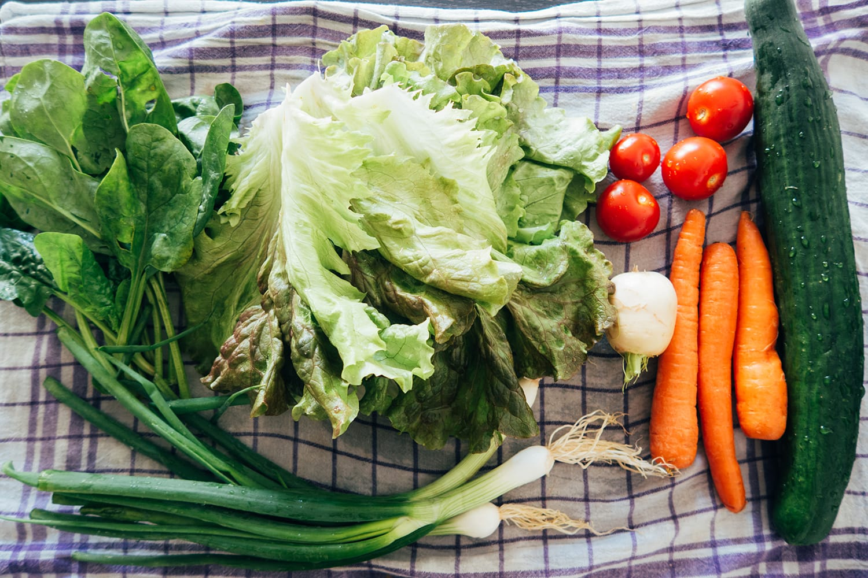 Wochenrueckblick KW23 | Salat | Personal | ivy.li