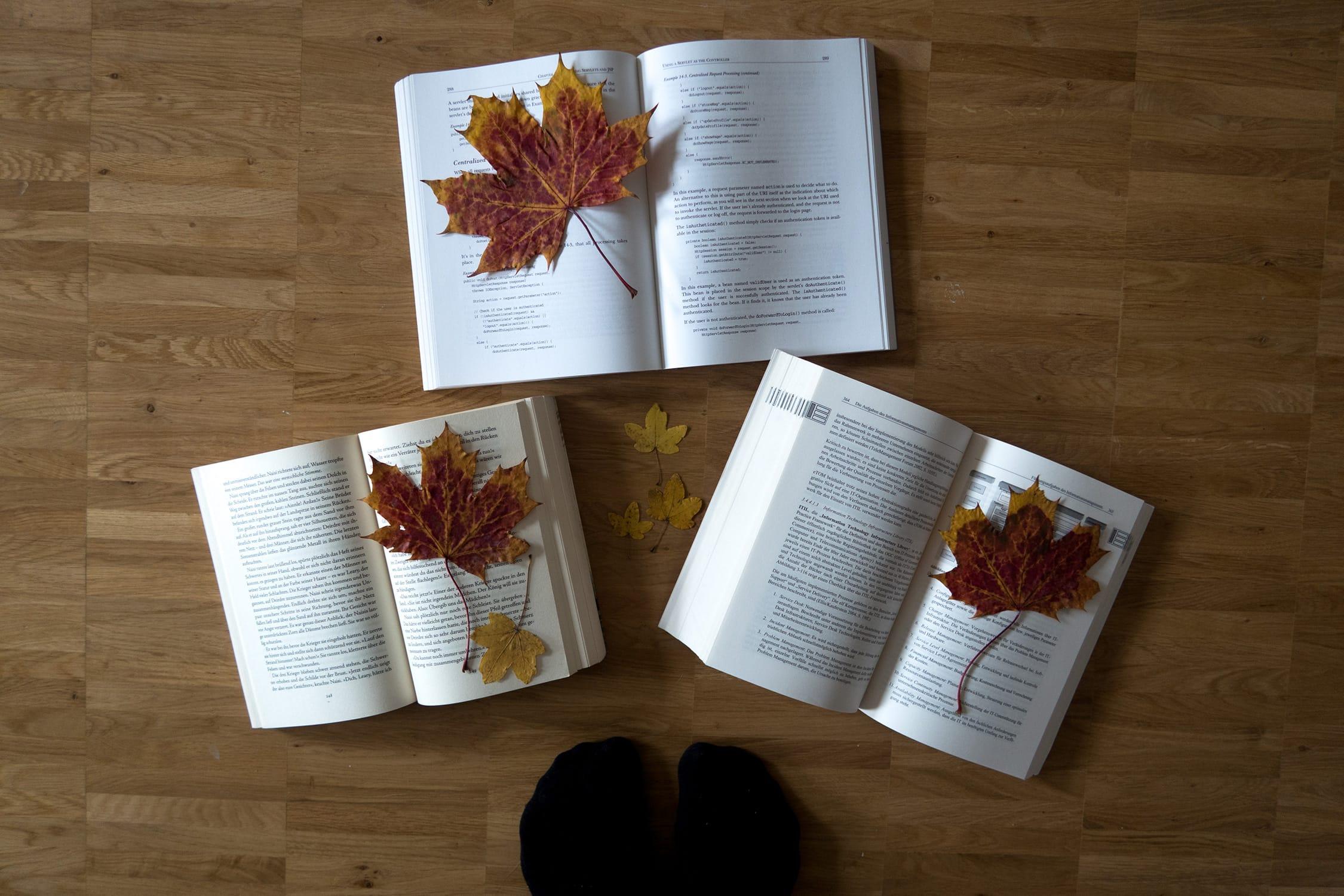 Wochenende in Bildern | 22. und 23. Oktober | ivy.li