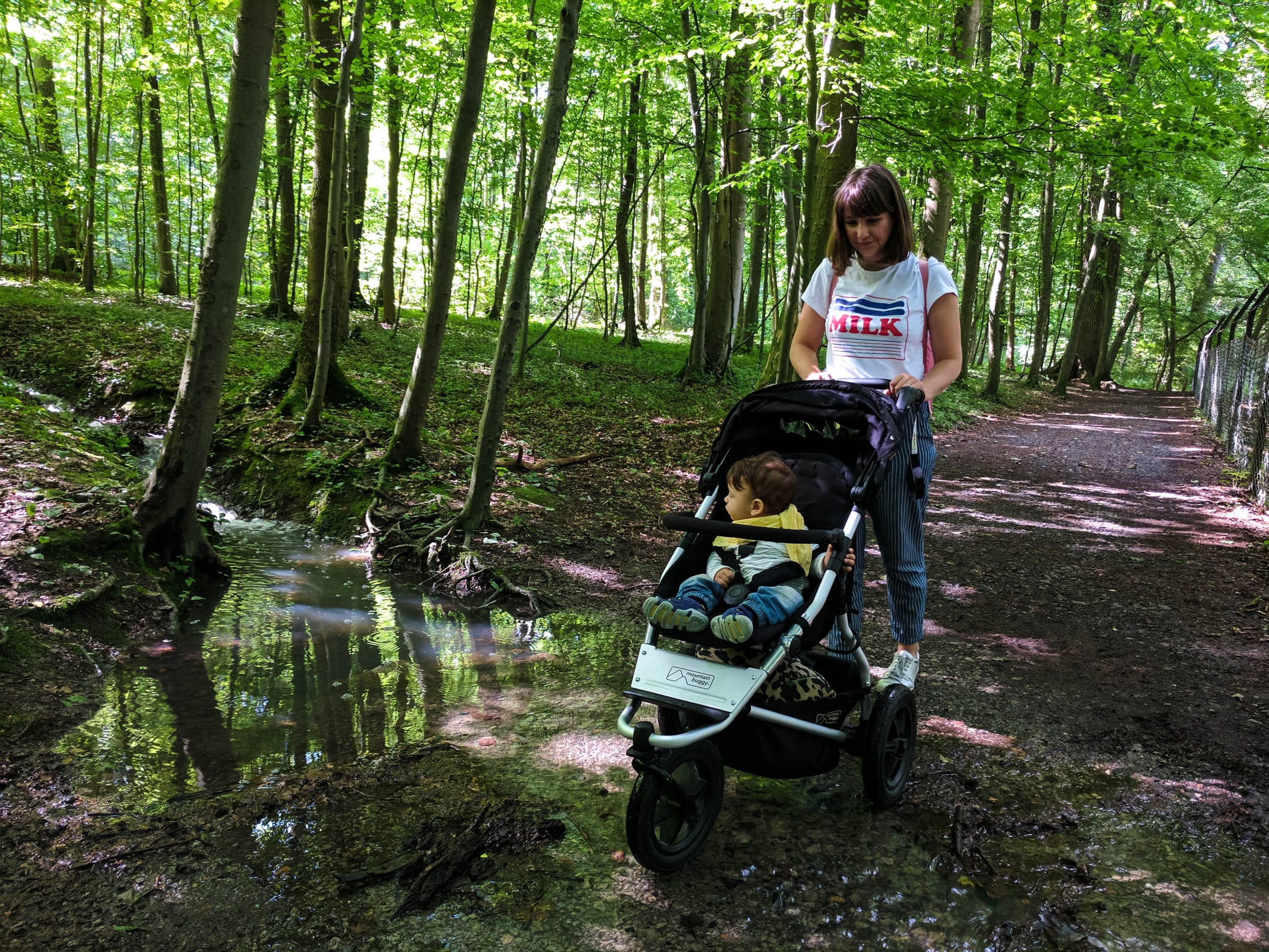 Mountainbuggy Urban Jungle | Wald | Überflutung | Trampelpfad | ivy.li